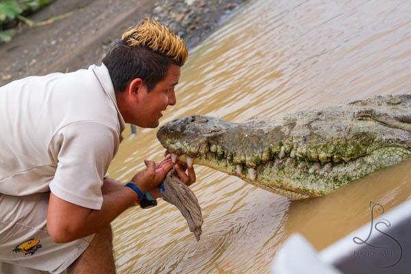 Costa Rica Tarcoles River Cruise and Crocodiles